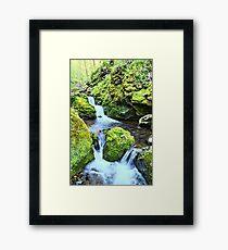 Moine Creek 3 Framed Print