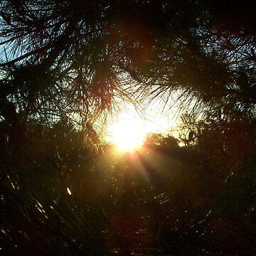 Shinning ~ Through by Auzriell