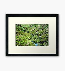 Above Moine Creek Framed Print