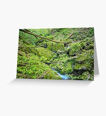 Above Moine Creek Greeting Card
