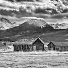 Outliers in Monochrome by Eric Glaser