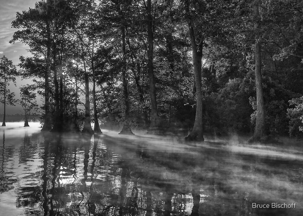 Sun stream steam by Bruce Bischoff