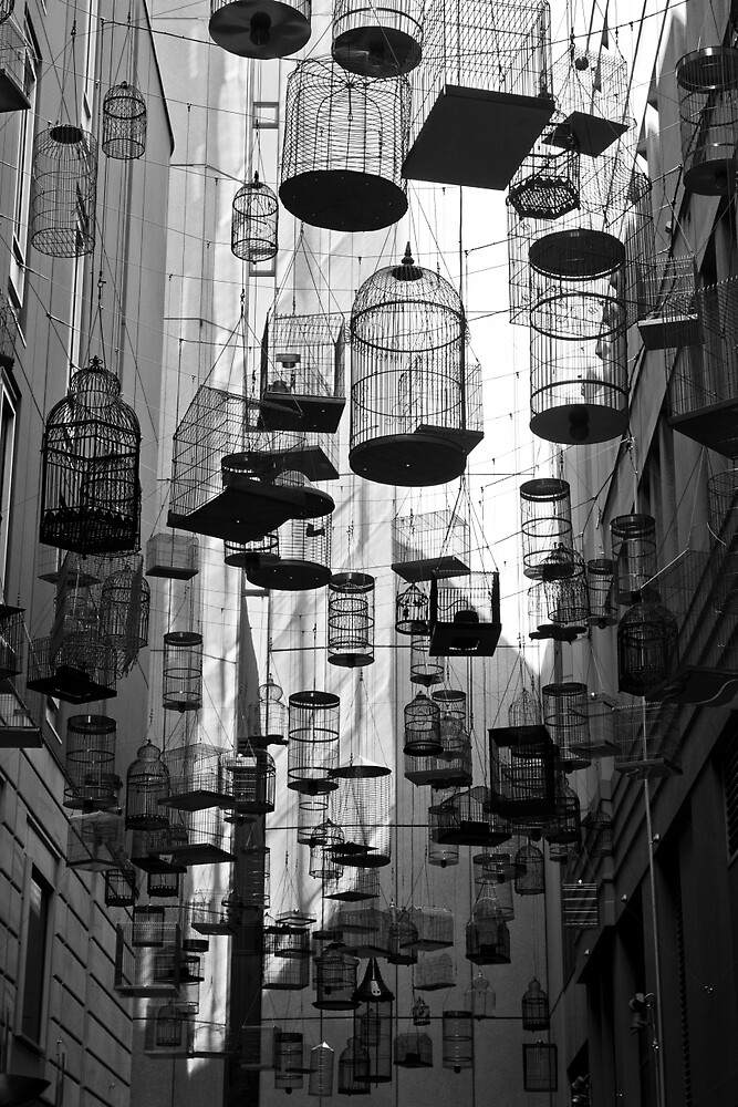 Caged (Vertical) by r2shotme