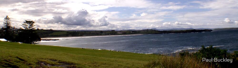 Beach Panorama by Paul Buckley
