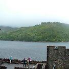 Eilean Donan Castle VI by Tom Gomez