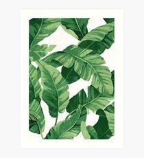Lámina artística Tropical banana leaves II