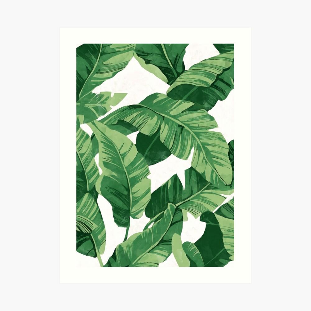Tropical banana leaves II Art Print