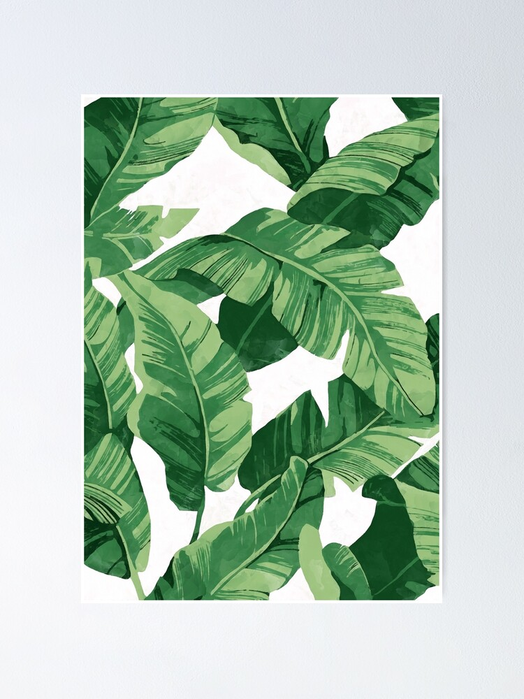 Alternate view of Tropical banana leaves II Poster