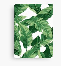 Tropical banana leaves II Canvas Print
