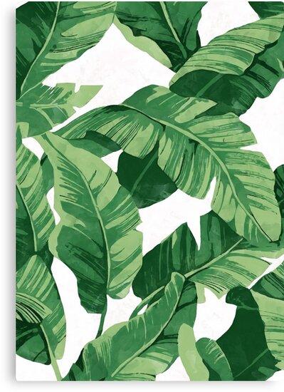 Tropical banana leaves II by CatyArte