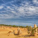The Pinnacles by garts
