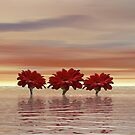 Flowers at Dawn by Keith Reesor