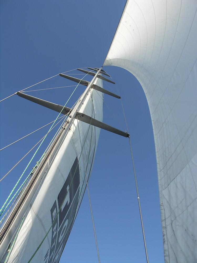 Sail Away by Debbie Bryant