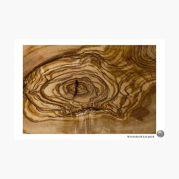 WoodSwimmer Still no.4, Olive Wood Photographic Print