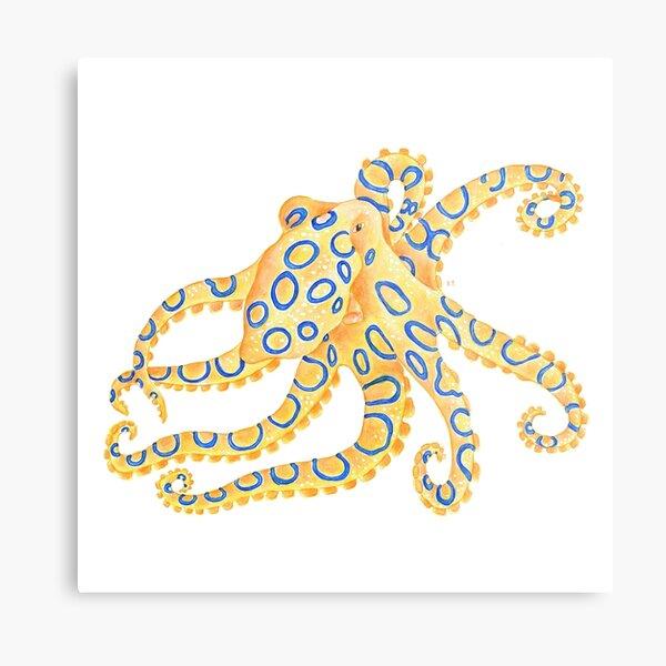 Blue Ring Octopus Metal Print