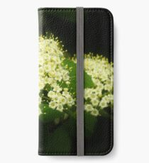May Bouquet  iPhone Wallet/Case/Skin