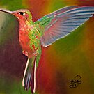 Colorful Hummingbird by Richard-Gary Butler