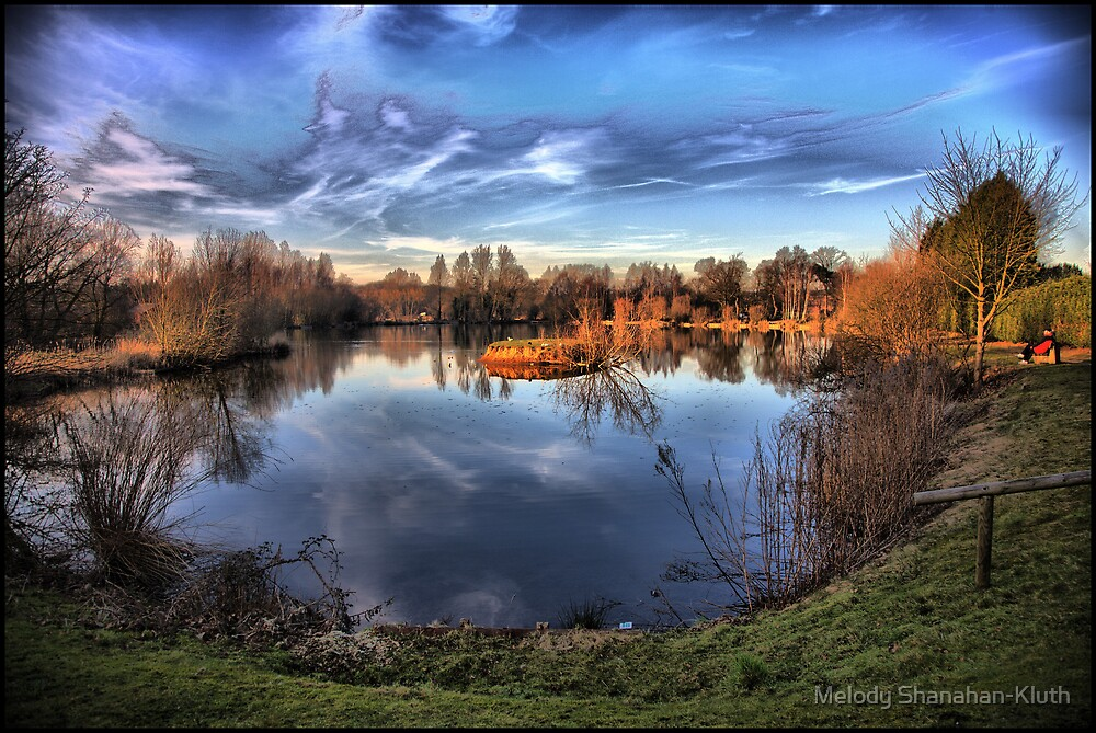 Woodland Waters HDR by Melody Shanahan-Kluth