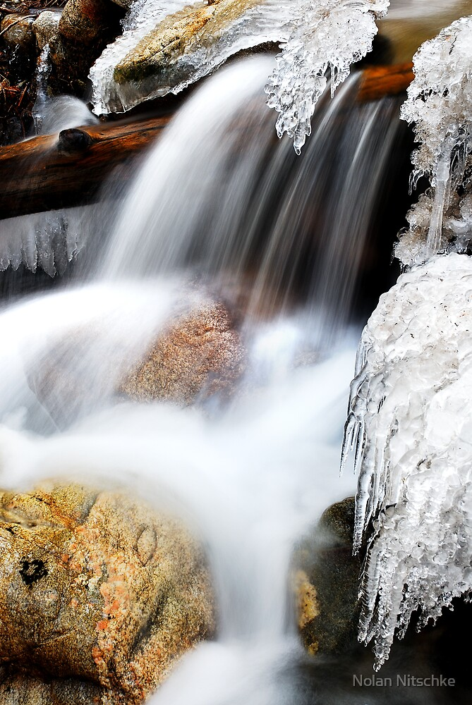 The Freezing Creek by Nolan Nitschke