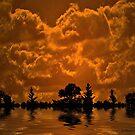 Vivid sunset..... by Rhonda Ford