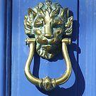 Lion Door Knocker by Mark Wilson