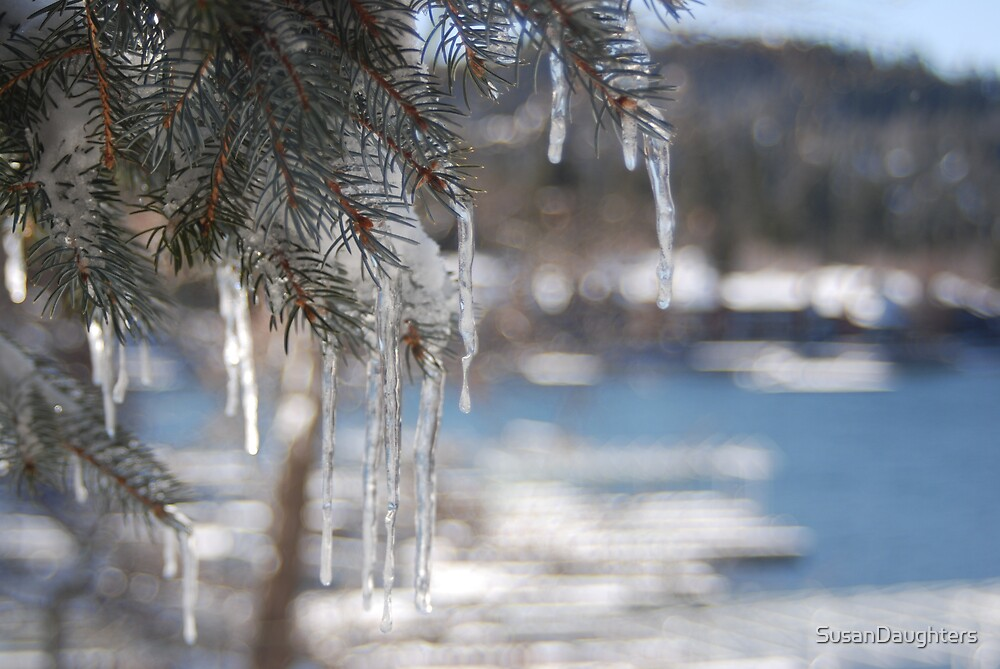 Icicles at the Lake by SusanDaughters