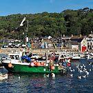 Attracting Attention — Lyme Regis Harbour by Susie Peek