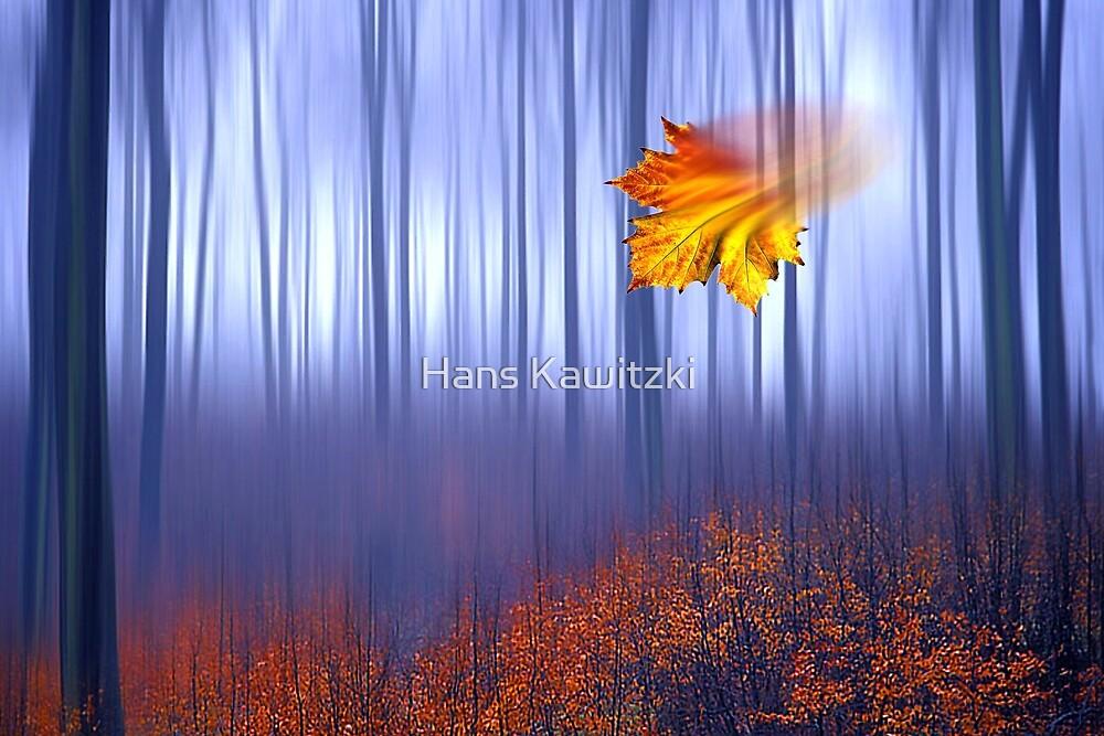 1503 Falling Leafe by Hans Kawitzki