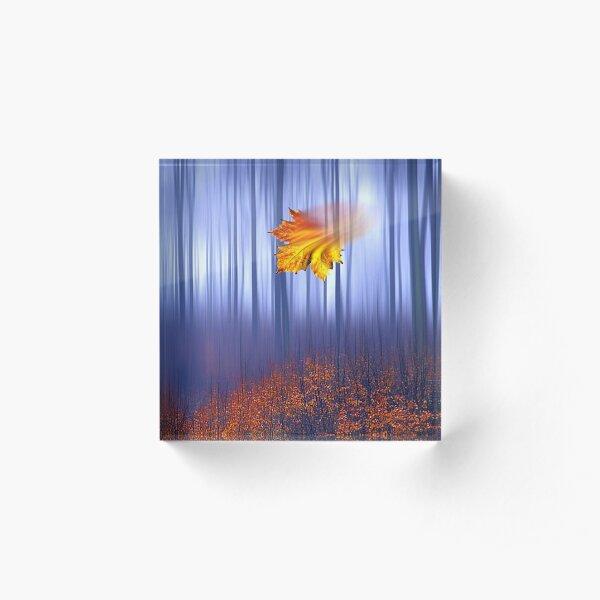 1503 Falling Leafe Acrylic Block