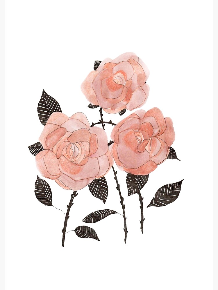 three roses  by spoto