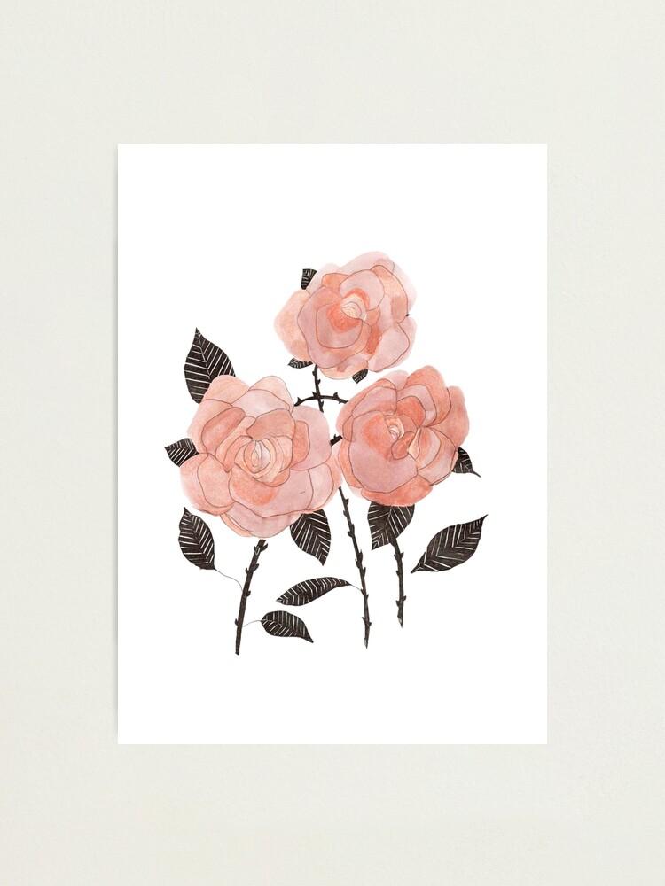 Alternate view of three roses  Photographic Print