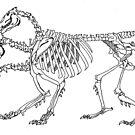 Chimera Skeleton by LydiaWoods