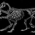 Chimera Skeleton (White) by LydiaWoods
