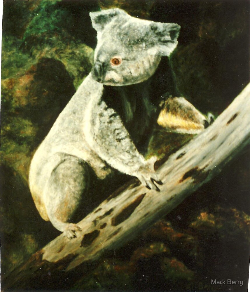 Australian Fauna by Mark Berry