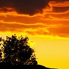nevada sky by andrewnelson