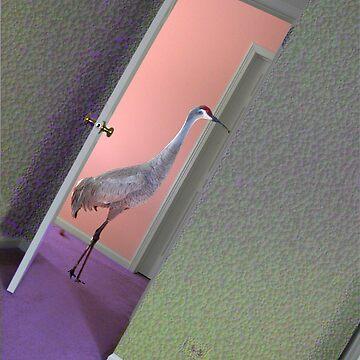 Crane in Crazy Doorway by kauisyndrome