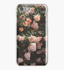 Heirloom Rose Bush iPhone Case/Skin
