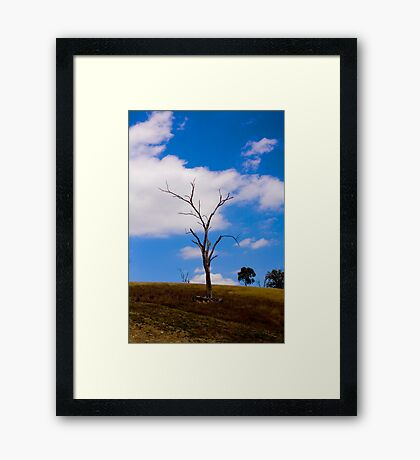 Lecacy of drought Framed Print
