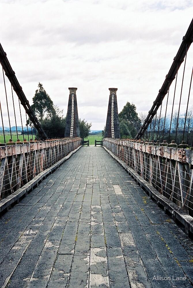 Baby Bridge by Allison Lane