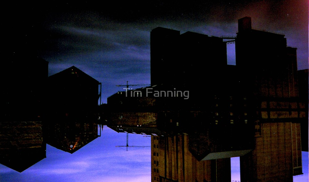 Grand Canal Quay by Tim Fanning