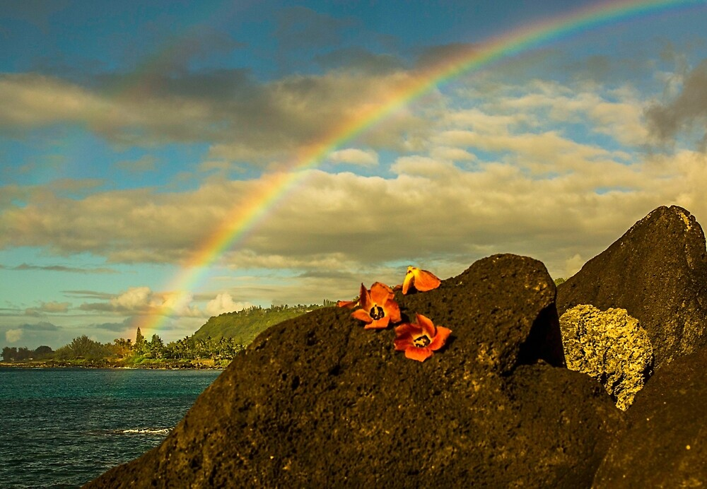 Hawaii Rainbows and Hau Blossoms by redmahan