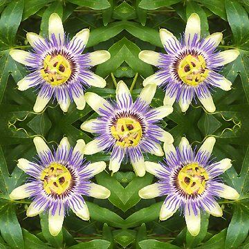 Passion Flower by ATJones