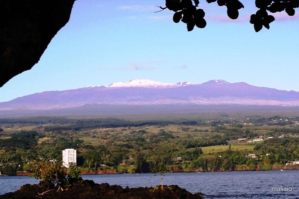 Lilioukalani Gardens, Hilo, Hawaii by maliaio