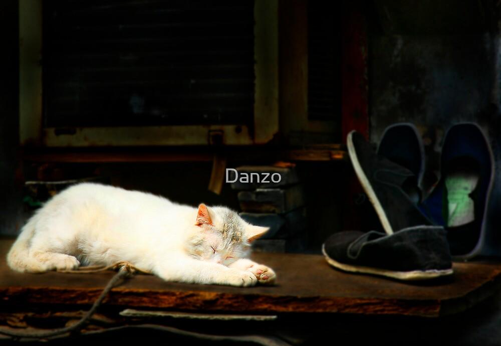 Kat by Danzo