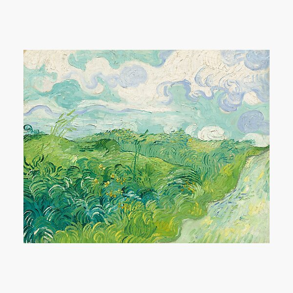 Vincent van Gogh Green Wheat Fields, Auvers 1890 Painting Photographic Print