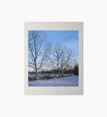 Winter Trees Art Board