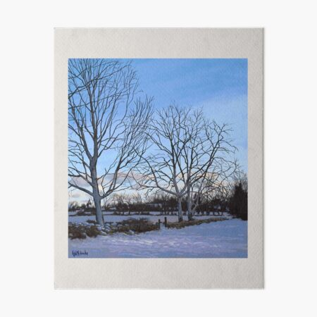 Winter Trees Art Board Print