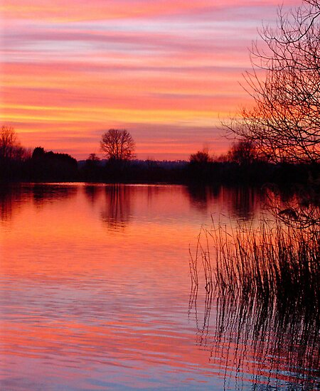 Sunset Lake  by Kate Towers IPA