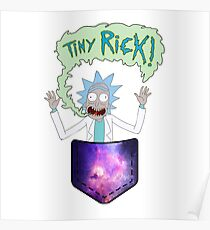 Ricky and Morty Poster