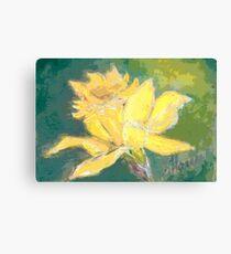 Retro Comic Daffodil Canvas Print